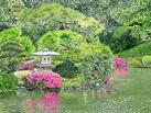 Japanese Water Garden in Shinjuku Gyoen