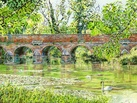 Leatherhead Bridge with Swans